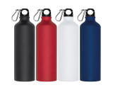 Trinkflasche mit Karabinerhaken, 800ml